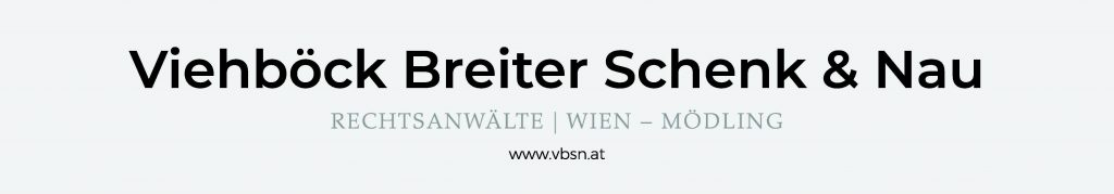 Logo VBSN